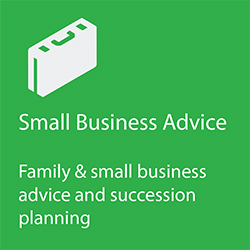 small business advice